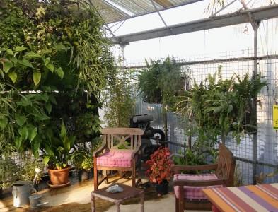 Mur végétal en exposition