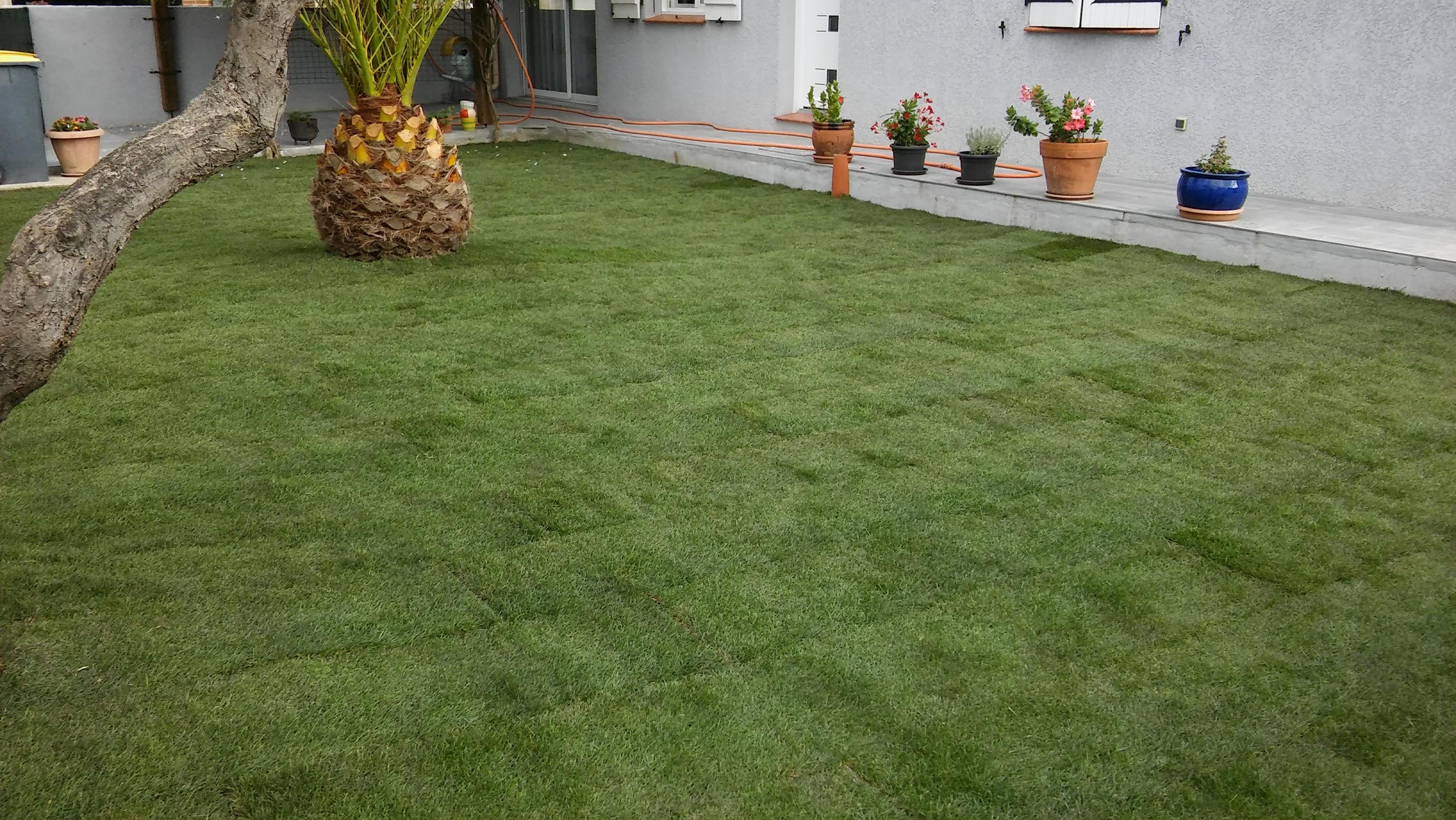 Aménagement de terrasse en bois et pelouse en plaquage