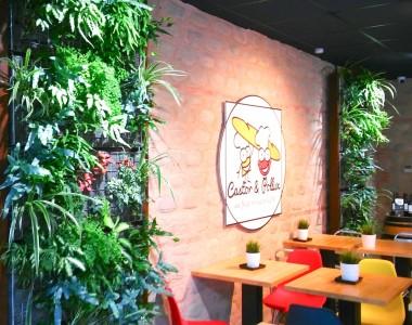 Installation d'un mur végétalisé en intérieur chez Castor & Pollux