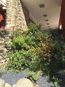 Hotel Méditérrannée Collioure