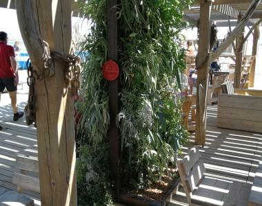 Exposition club de plage les 'ZIPPOCAMPS'