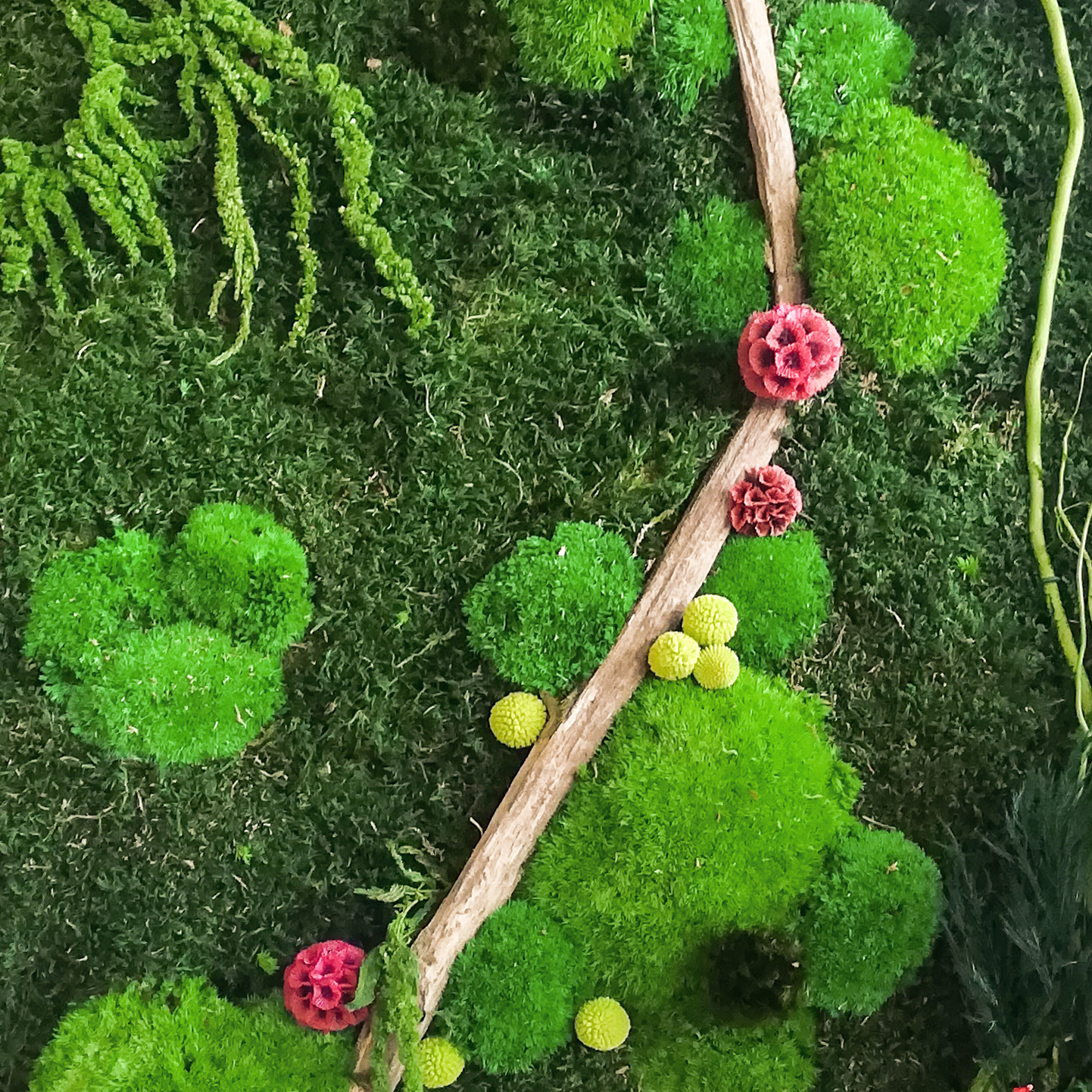 Tableau végétal stabilisé <br/>«hors cadre»