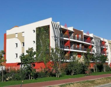 Mur végétalisé extérieur – St Cyprien 2018