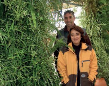 Bertrand et Corine Clauzon font le mur – article de l'Agri du 23 novembre 2017