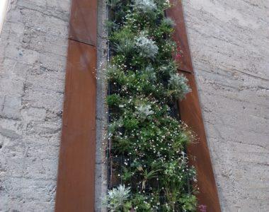 Mur végétalisé d'extérieur –  particulier 2019