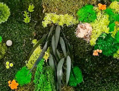 «La forêt aux deux totems»