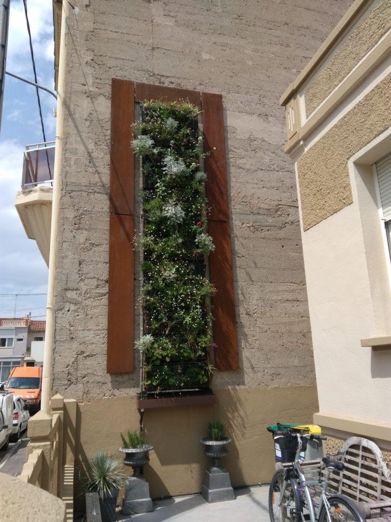 Creation Mur Vegetal Exterieur mur végétalisé d'extérieur – particulier 2019 | bertrand